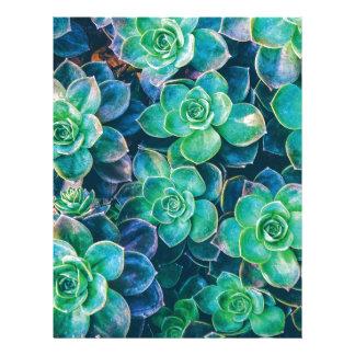 Succulents, Succulent, Cactus, Cacti, Green, Plant Letterhead