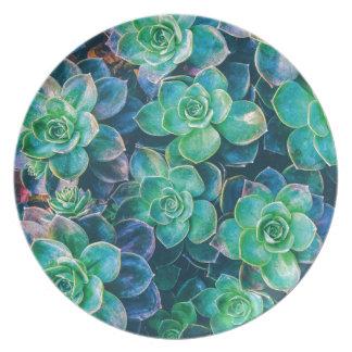 Succulents, Succulent, Cactus, Cacti, Green, Plant Plate