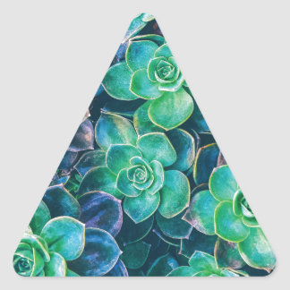 Succulents, Succulent, Cactus, Cacti, Green, Plant Triangle Sticker