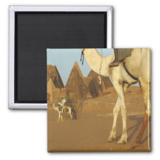 Sudan, North (Nubia), Meroe pyramids with Magnets