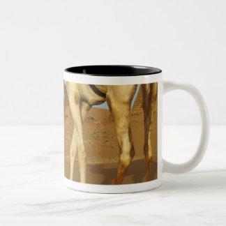 Sudan, North (Nubia), Meroe pyramids with Coffee Mug