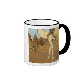 Sudan, North (Nubia), Meroe pyramids with Mug