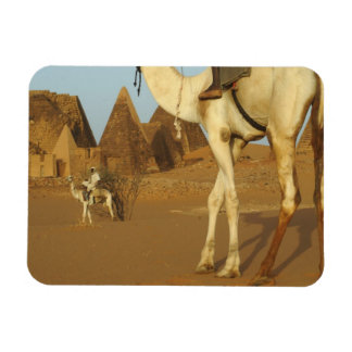 Sudan, North (Nubia), Meroe pyramids with Rectangular Photo Magnet