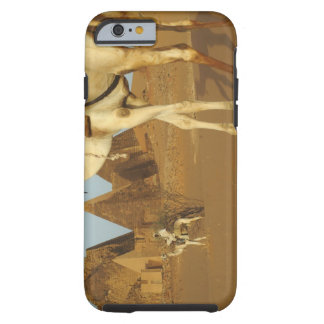 Sudan, North (Nubia), Meroe pyramids with Tough iPhone 6 Case