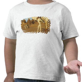 Sudan, North (Nubia), Meroe pyramids with T-shirt