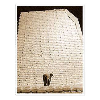 Sugar Bags, History, Puerto Rico Postcard