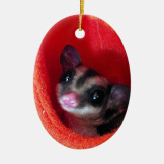 Sugar Glider in Orange Hanging Bed Ceramic Oval Ornament