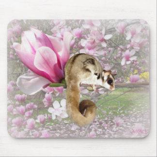 Sugar Glider Sweetness Mouse Pad