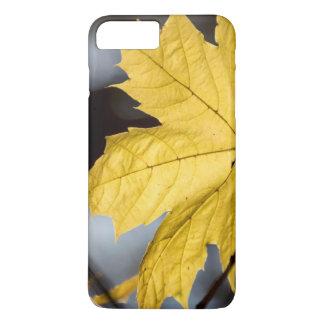 Sugar maple, fall iPhone 7 plus case
