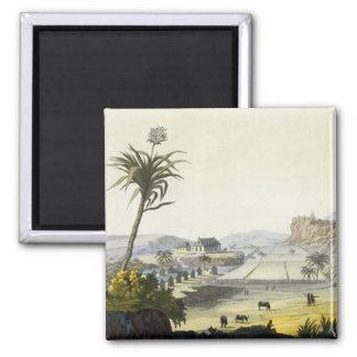 Sugar Plantation, Antilles (colour engraving) Magnets