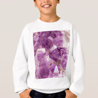 Sugar Plum Fairy Crystals Sweatshirt
