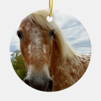 Sugar The Appaloosa Horse,_ Ceramic Ornament