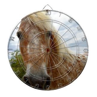 Sugar The Appaloosa Horse,_ Dartboard