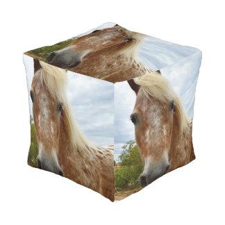 Sugar The Appaloosa Horse, Full Print Pouffe. Pouf