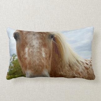 Sugar The Appaloosa Horse, Lumbar Cushion. Lumbar Pillow