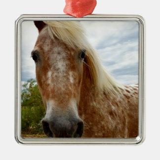 Sugar The Appaloosa Horse,_ Metal Ornament