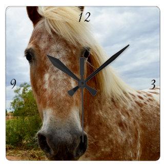 Sugar The Appaloosa Horse, Square Wall Clock. Square Wall Clock