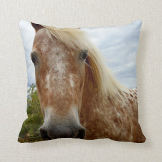 Sugar The Appaloosa Horse, Throw Cushion. Throw Pillow