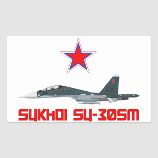 Sukhoi Su-30SM Russian Air Force VKS Sticker