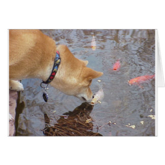Suki Kisses Koi Card