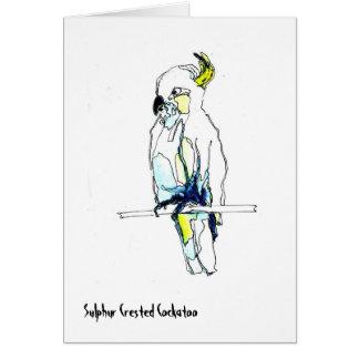 Sulphur Crested Cockatoo Card