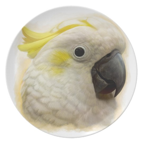 Sulphur Crested Cockatoo realistic painting Plate