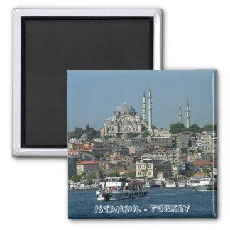 Sultan Ahmed, Istanbul, Turkey (Fridge Magnet) Magnet