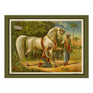 Sultans Steed RARE VINTAGE POSTER Customized