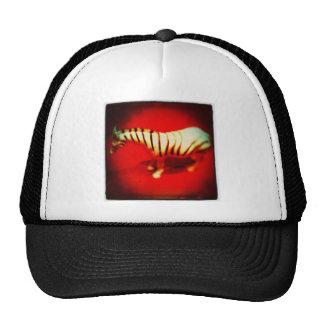 Sultry Zebra Trucker Hats