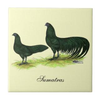 Sumatra Black Chickens Ceramic Tiles