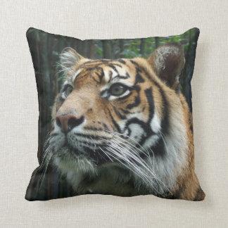 Sumatran Tiger Cushion