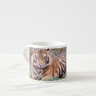 Sumatran Tiger Espresso Mug