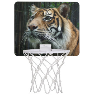 Sumatran Tiger Mini Basketball Hoop