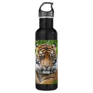Sumatran Tiger Photo 710 Ml Water Bottle