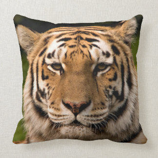 Sumatran Tiger Portrait Throw Pillow