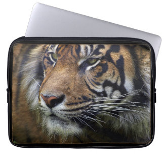 Sumatran Tiger Wild Animal Big Cat-Lover Laptop Sleeve