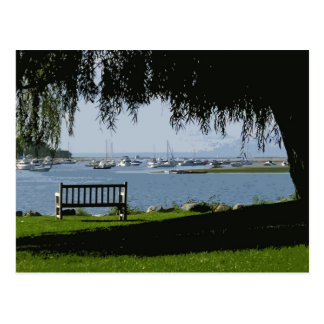 Summer Afternoon @ the Harbor Postcard