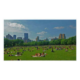 Summer at Central Park Poster