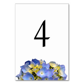 Summer Blue Double Sided Table Number Cards Table Card