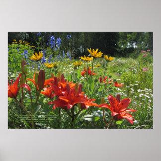 Summer Burnt Orange Asiatic Lilies 24x16 Poster