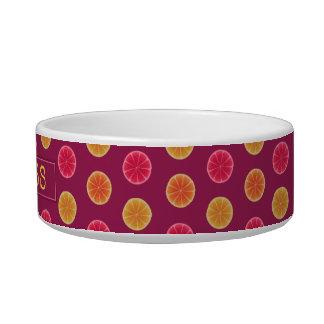 Summer Citrus Fruit Slice Tropical | Pet Name Bowl