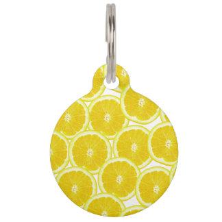 Summer Citrus Lemon Slices Pet Name Tag