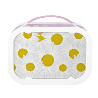 Summer colorful pattern purple marguerite lunch box