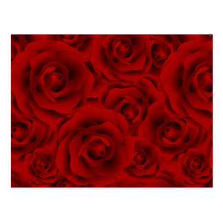 Summer colorful pattern rose postcard