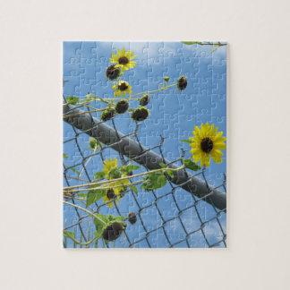 Summer Daisy Jigsaw Puzzle
