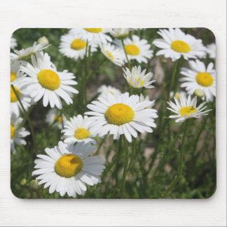 Summer daisy mousepad