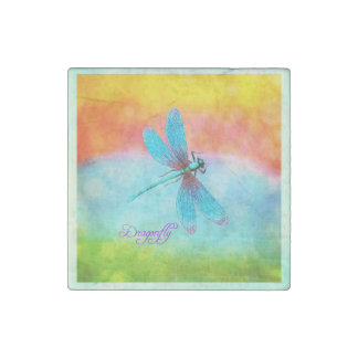 Summer Dragonfly Rainbow Bright Decorative Stone Magnets