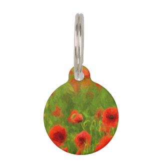 Summer Feelings - wonderful poppy flowers II Pet Tags