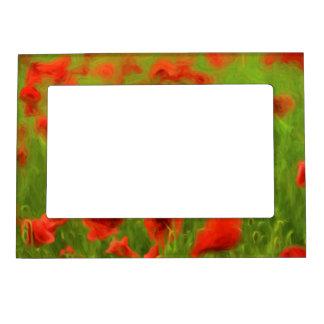 Summer Feelings - wonderful poppy flowers II Photo Frame Magnets