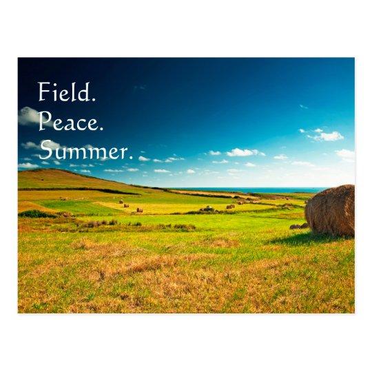 Summer Field Postcard
